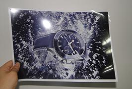 قطعه لامپ چاپ شده توسط 3.2 متر (10 فوت) چاپگر اکولوژیکی حلال WER-ES3202 2